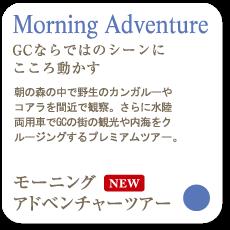 Morning Adventure