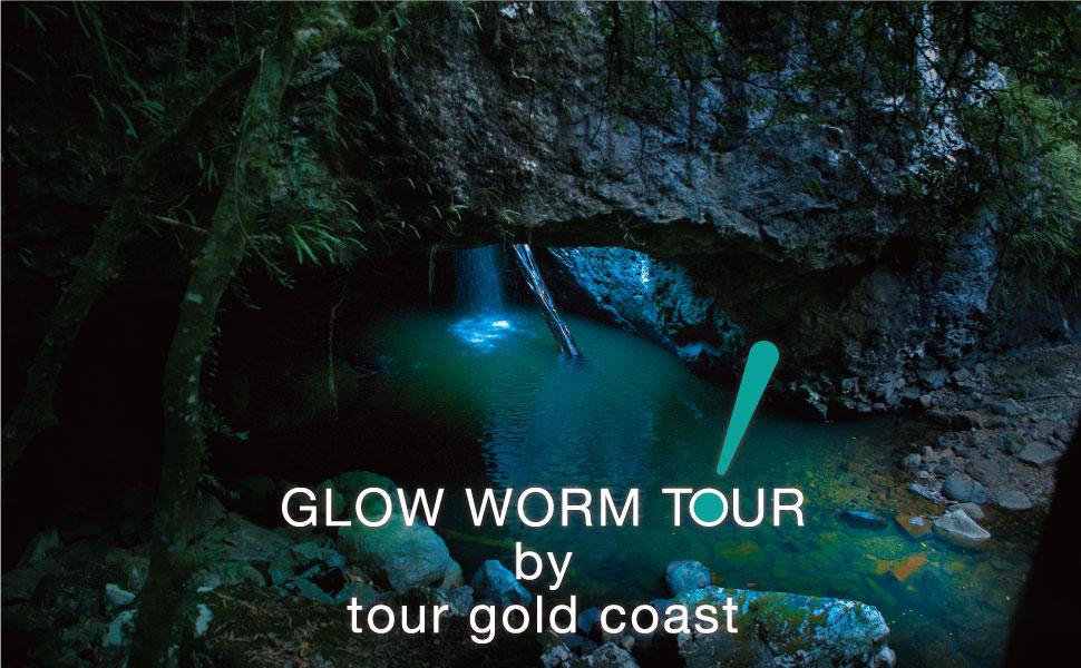 Glow Worm Tour - Tour Gold Coast